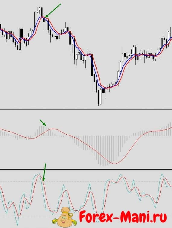 stochastic macd
